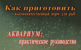Мебендазол (Вермокс) для лечения аквариумных рыб