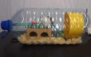 Как сделать дом для хомяка