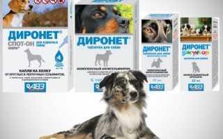 Диронет: инструкция по применению для собак
