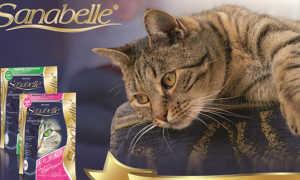 Корм для кошек Санабель (Sanabelle): виды, состав, нормы кормления