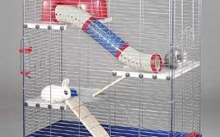 Клетка для декоративного кролика фото