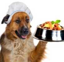 Рецепты корма для собак: плюсы и минусы натуралки, меню на каждый день