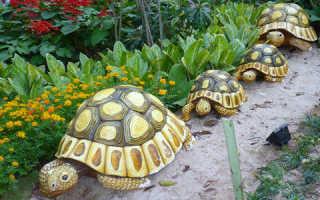 Как сделать черепаху из дерева
