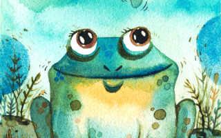 У жабы есть легкие