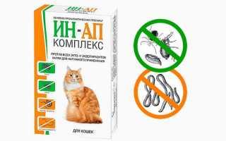 Ин-ап комплекс для кошек и собак: инструкция по применению, противопоказания