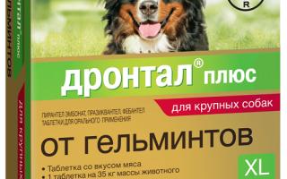Таблетки дронтал для собак