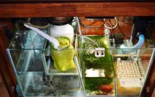 Самп для аквариума: как сделать своими руками, принципы работы