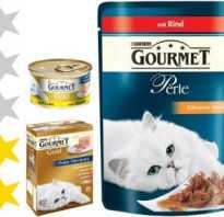 Корм Гурме (Gourmet) для кошек: ассортимент и все виды, составы