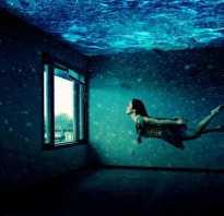 Не горит свет в аквариуме, как починить?