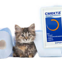 Смекта коту при поносе дозировка