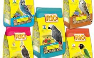 Корм рио для волнистых попугаев — отзывы