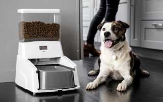 Автоматическая кормушка для щенка