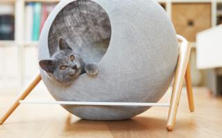 Как сделать домик для кошки своими руками: из картонной коробки, футболки и фанеры