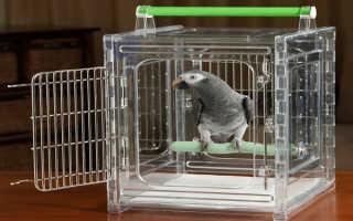 Переноска для попугая
