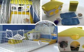 Калькулятор клетки для крыс