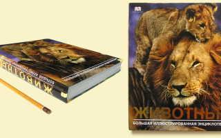 Большая современная энциклопедия животные
