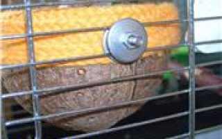 Гнездо для канарейки крючком