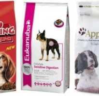 Классификация кормов для собак