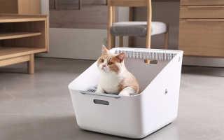 Какой наполнитель для кошачьего туалета лучше выбрать: ТОП 12